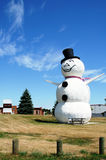 Huge snowman. A huge snowman standing on the grass against blue sky Stock Images