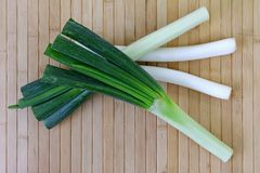 Huge stalks of fresh Japanese Leeks (Negi) Stock Photography