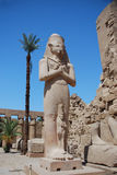 Huge statue in egypt Stock Images
