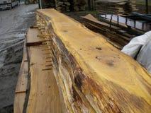 Oak boards stock photography
