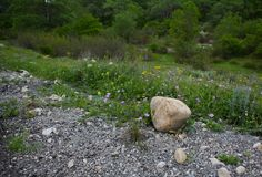 Huge stone boulder on footpath Stock Photography
