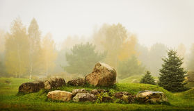 Huge stones in park Royalty Free Stock Photos