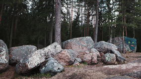 Huge stones in park Monrepos Stock Images