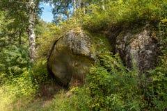 Huge stones on terrenkur health trail along Belokurikha mountain river. Huge stones on terrenkur health trail along the Belokurikha mountain river Royalty Free Stock Photos
