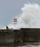Huge stormy wave Stock Image