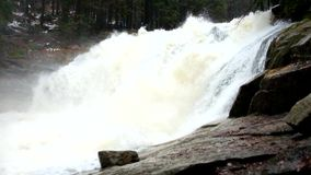 Huge stream of water is falling into foamy pond below. High cascade in forest. Crystal water of mountain river. Huge stream of water is falling into foamy pond stock footage