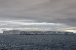 Huge Tabular Iceberg floating in Bransfield Strait near the northern tip of the Antarctic Peninsula Stock Image