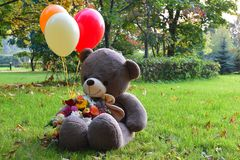 Big teddy bear with balloons on the grass. Beautiful autumn has come