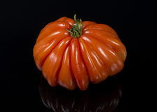 Huge tomato Stock Photo