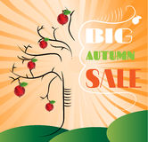Huge tree with red apples and text Big Autumn Sale Stock Photos