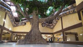 Huge tree stand in the middle of hall of the zoo. Huge artificial tree stand in the middle of hall of the zoo. Place with wild animals living in artificial stock video footage