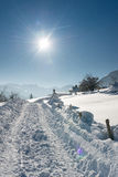Huge truck tracks in snow Royalty Free Stock Images