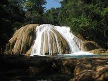 Huge Waterfall in  Semuc Champey, Guatemala Stock Image