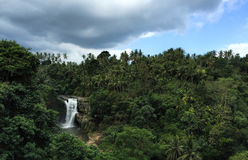 Huge waterfall in tropical forest. Bright exotic nature with fresh water stream. Stock Images