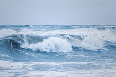 Big waves at the danish north sea coast royalty free stock images