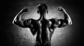 Huge weightlifter is standing with his back to the camera and st. Raining his hands demonstrating a double bicep. Back view Stock Photography