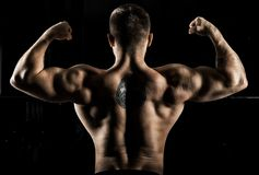 Huge weightlifter is standing with his back to the camera and st. Raining his hands demonstrating a double bicep. Back view Royalty Free Stock Photography