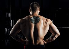 Huge weightlifter stands with his back to the camera and shows h. Is huge back. Back view Stock Images