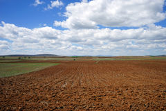 Huge white air clouds lie on plowed brown earth Royalty Free Stock Image