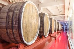 Huge wine barrels Stock Images
