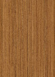Huge wood teak texture Stock Images
