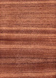 Huge wood texture royalty free stock photo