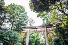 Meiji Jingu Gaien. The huge wooden Torii gate leading to Meiji Jingu shrine royalty free stock images