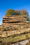 Huge woodpile Royalty Free Stock Images