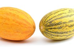 Huge yellow melons Royalty Free Stock Photos