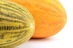 Huge yellow melons Stock Images
