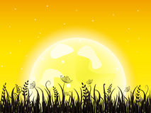 Huge yellow moon with grass meadow Royalty Free Stock Images