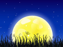Huge yellow moon with grass meadow Stock Image
