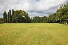 Huge yellowed field. In a luxurious Italian park-garden Sigurta Royalty Free Stock Image