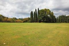 Huge yellowed field. In a luxurious Italian park-garden Sigurta Stock Image