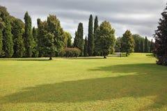 Huge yellowed field in park Sigurta. Huge yellowed field in a luxurious Italian park-garden Sigurta around Verona Royalty Free Stock Photo