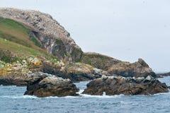 Hugebird sanctuary at Seven Islands Royalty Free Stock Image