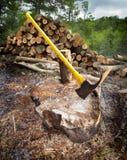 hugga av trä royaltyfria bilder
