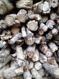 hugga av trä Arkivbilder