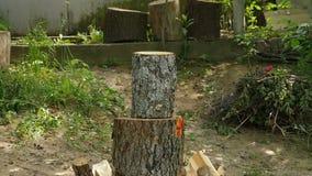 Hugga av trä med en yxa arkivfilmer