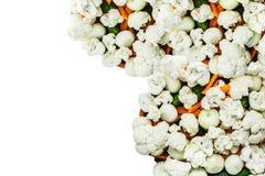 Huggen av blomkål på isolerade grönsaker Royaltyfri Foto