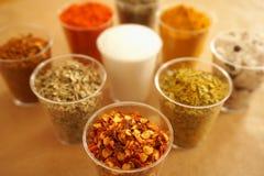 Huggen av chilipaprika med frö och andra kryddor och torkade örter för att förbereda mat royaltyfria foton