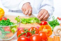 Huggen av grönsallat- och kockhand med en kniv royaltyfri foto