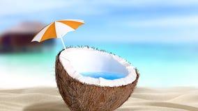Huggen av kokosnöt Royaltyfri Foto