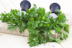 huggen av nytt parsley arkivfoton