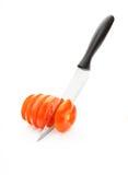 Huggen av tomat Fotografering för Bildbyråer
