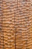 Huggen wood bakgrund Arkivbild