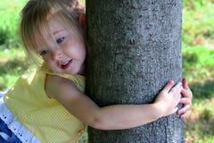 hugger δέντρο Στοκ Φωτογραφία