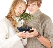 Hugging couple with bonsai tree Stock Photography
