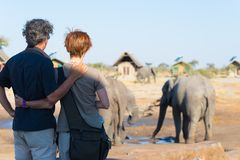 Hugging couple looking at elephant herd drinking from waterhole. Adventure and wildlife safari in Africa. People traveling concept.  royalty free stock photography
