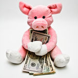 Hugging Money. Soft toy pig hugging a bunch of paper money. American currency. White background with shadow gradient do to pig's highlights royalty free stock images